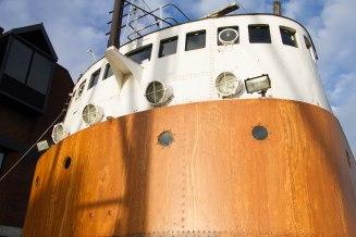 (Arctic Corsair) image courtesy of Clive Dennison (11)