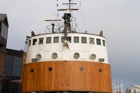 (Arctic Corsair) image courtesy of Clive Dennison (2)