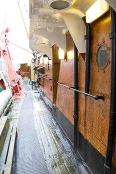 (Arctic Corsair) image courtesy of Clive Dennison (20)