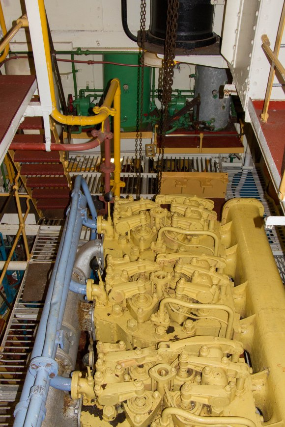 (Arctic Corsair) image courtesy of Clive Dennison (23)