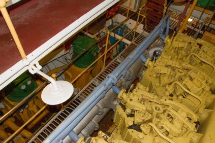 (Arctic Corsair) image courtesy of Clive Dennison (32)