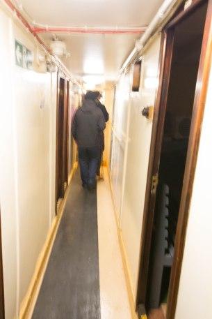 (Arctic Corsair) image courtesy of Clive Dennison (39)
