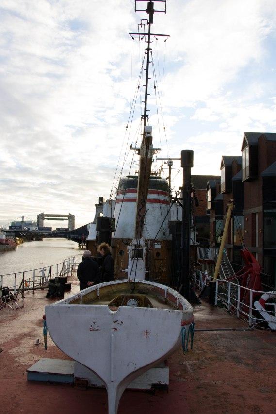 (Arctic Corsair) image courtesy of Clive Dennison (45)