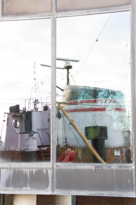 (Arctic Corsair) image courtesy of Clive Dennison (49)