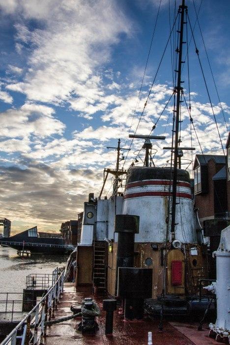 (Arctic Corsair) image courtesy of Clive Dennison (51)