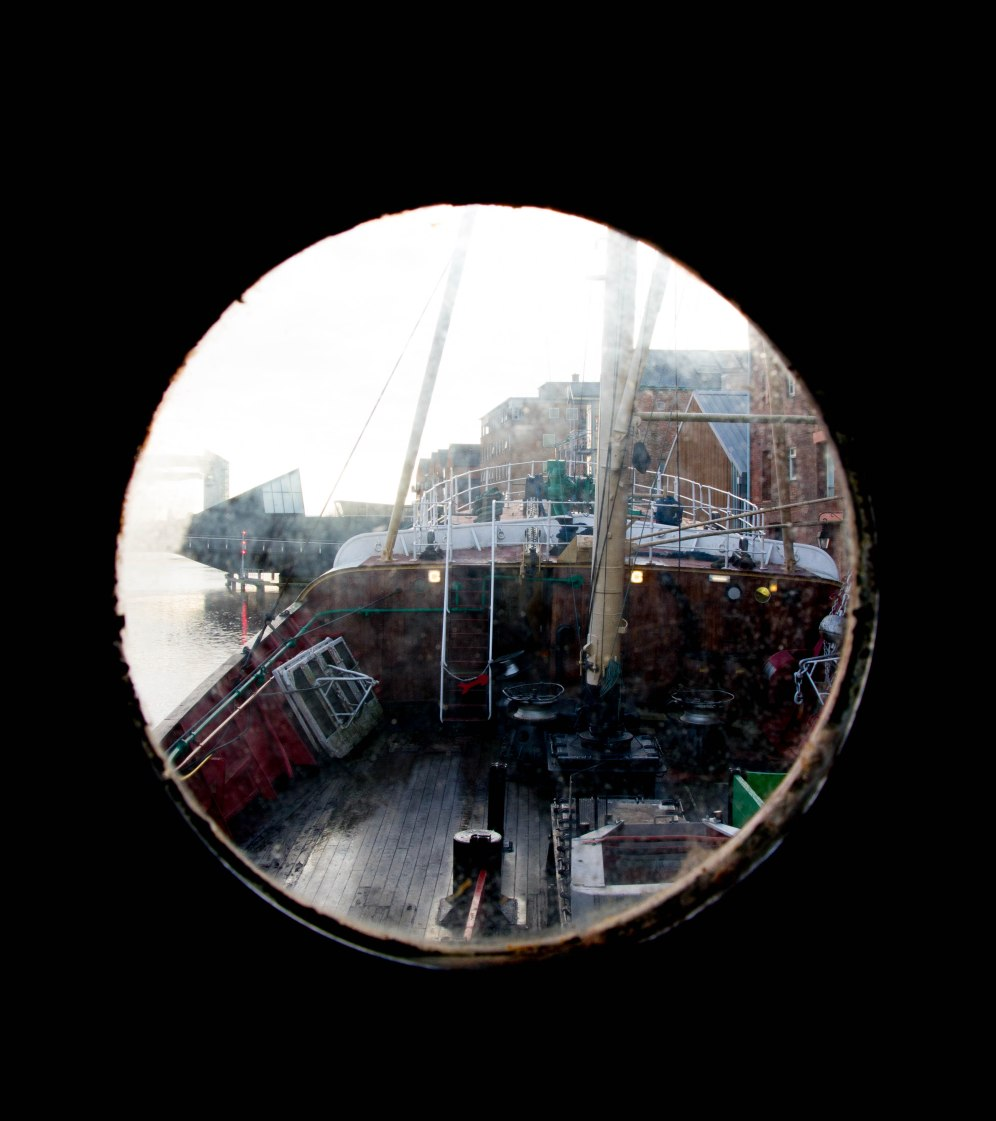 (Arctic Corsair) image courtesy of Clive Dennison (54)