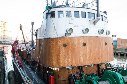 (Arctic Corsair) image courtesy of Clive Dennison (75)
